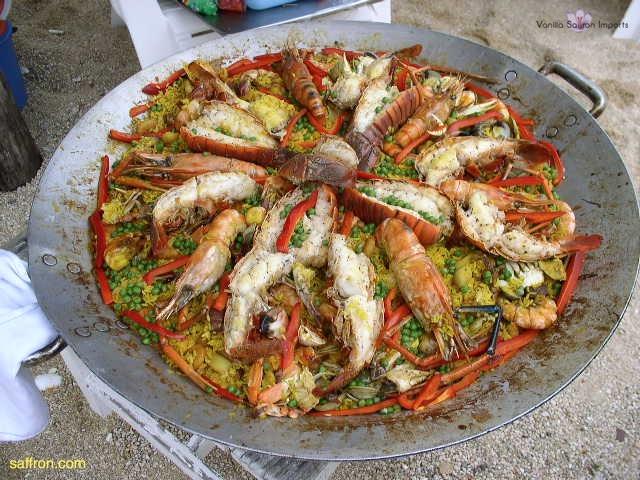 Vanilla, Saffron Imports Acapulco Paella Festival June 2004  101