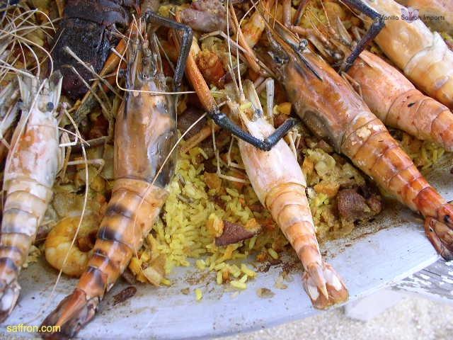 Vanilla, Saffron Imports Acapulco Paella Festival June 2004  104