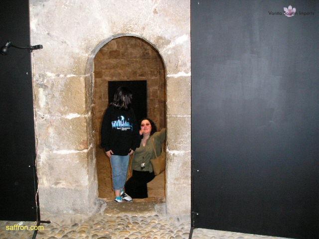 Vanilla, Saffron Imports Luna Pope Castle Valencia 2003 621