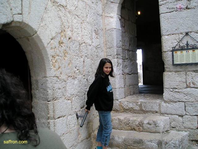 Vanilla, Saffron Imports Luna Pope Castle Valencia 2003 638