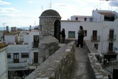 Vanilla, Saffron Imports Luna Pope Castle Valencia 2003 619