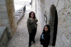 Vanilla, Saffron Imports Luna Pope Castle Valencia 2003 637