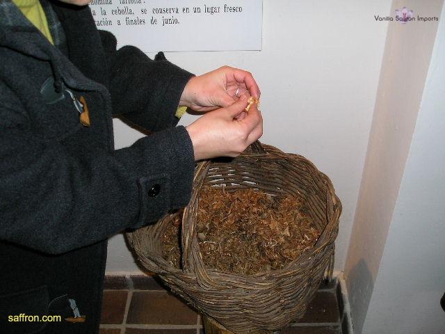 Vanilla, Saffron Imports Museo del Azafran, Monreal del Campo Teruel Spain 2004 692