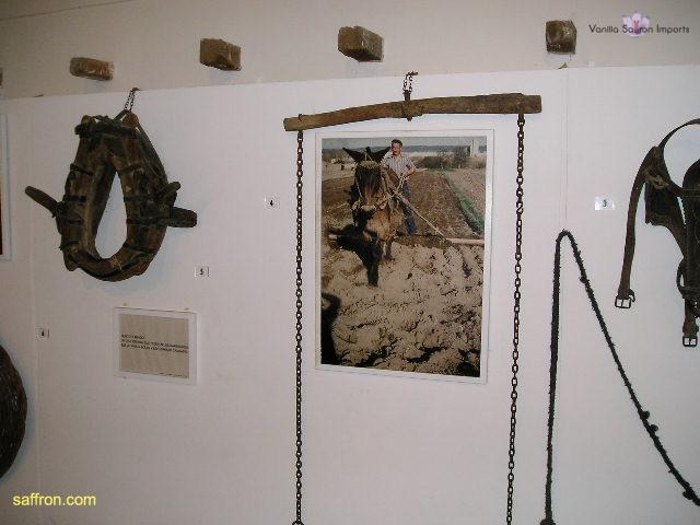 Vanilla, Saffron Imports Museo del Azafran, Monreal del Campo Teruel Spain 2004 696