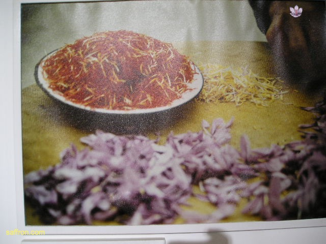Vanilla, Saffron Imports Museo del Azafran, Monreal del Campo Teruel Spain 2004 724