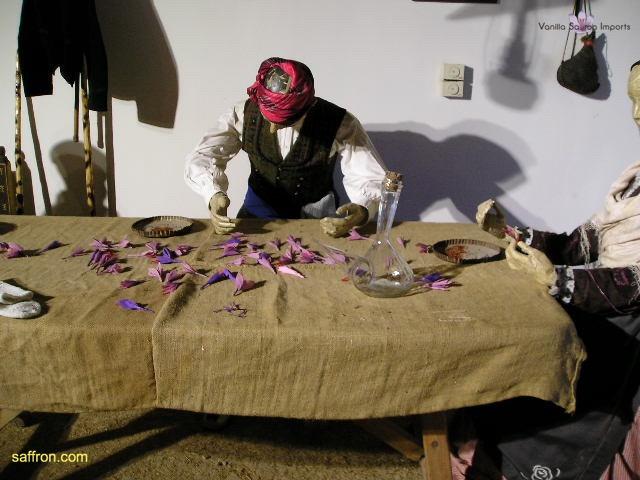 Vanilla, Saffron Imports Museo del Azafran, Monreal del Campo Teruel Spain 2004 726