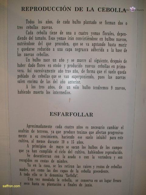 Vanilla, Saffron Imports Museo del Azafran, Monreal del Campo Teruel Spain 2004 765