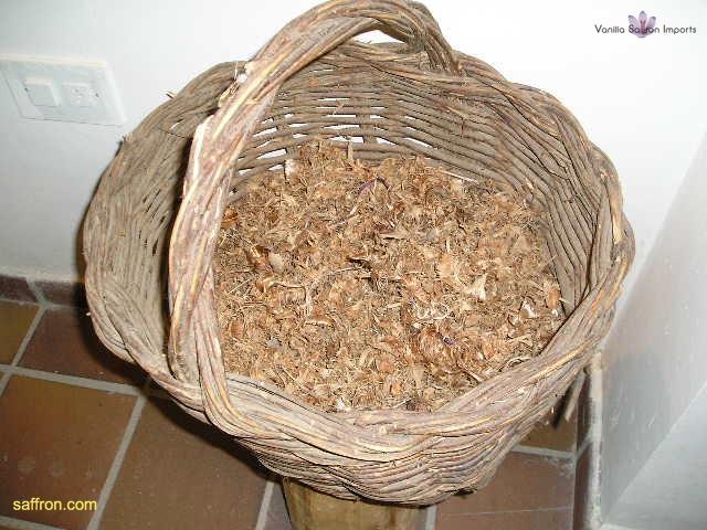Vanilla, Saffron Imports Museo del Azafran, Monreal del Campo Teruel Spain 2004 766