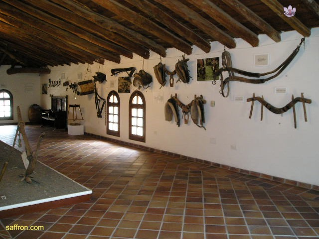 Vanilla, Saffron Imports Museo del Azafran, Monreal del Campo Teruel Spain 2004 791