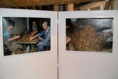 Vanilla, Saffron Imports Museo del Azafran, Monreal del Campo Teruel Spain 2004 769